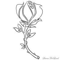 Фото розу в стиле трайбл карандашом