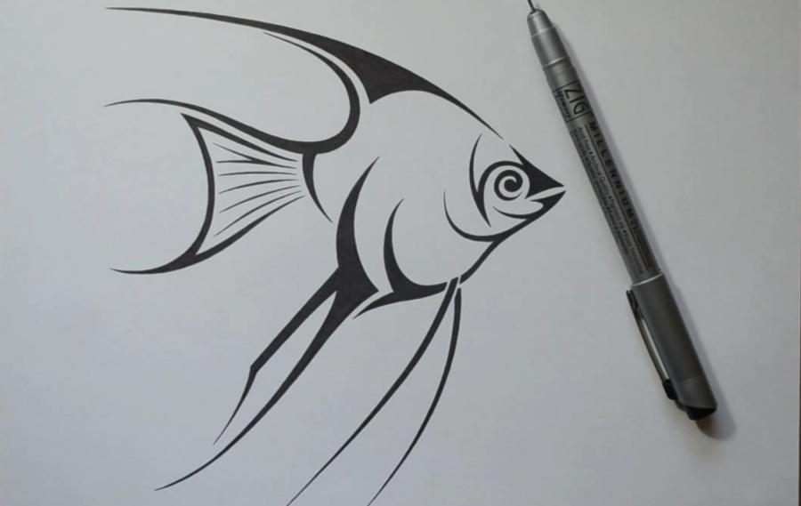 Рисуем рыбу Скалярию в стиле тату на бумаге