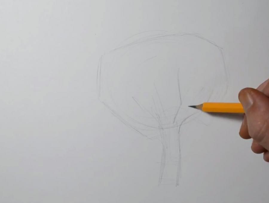 Рисуем тату дерево на бумаге