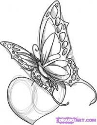тату в виде бабочки с сердцем