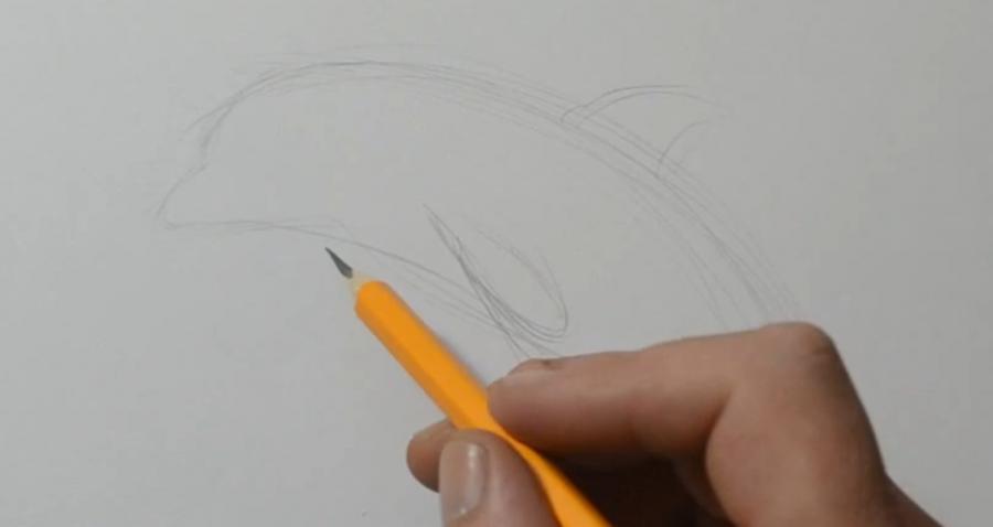 Рисуем татуировку дельфина