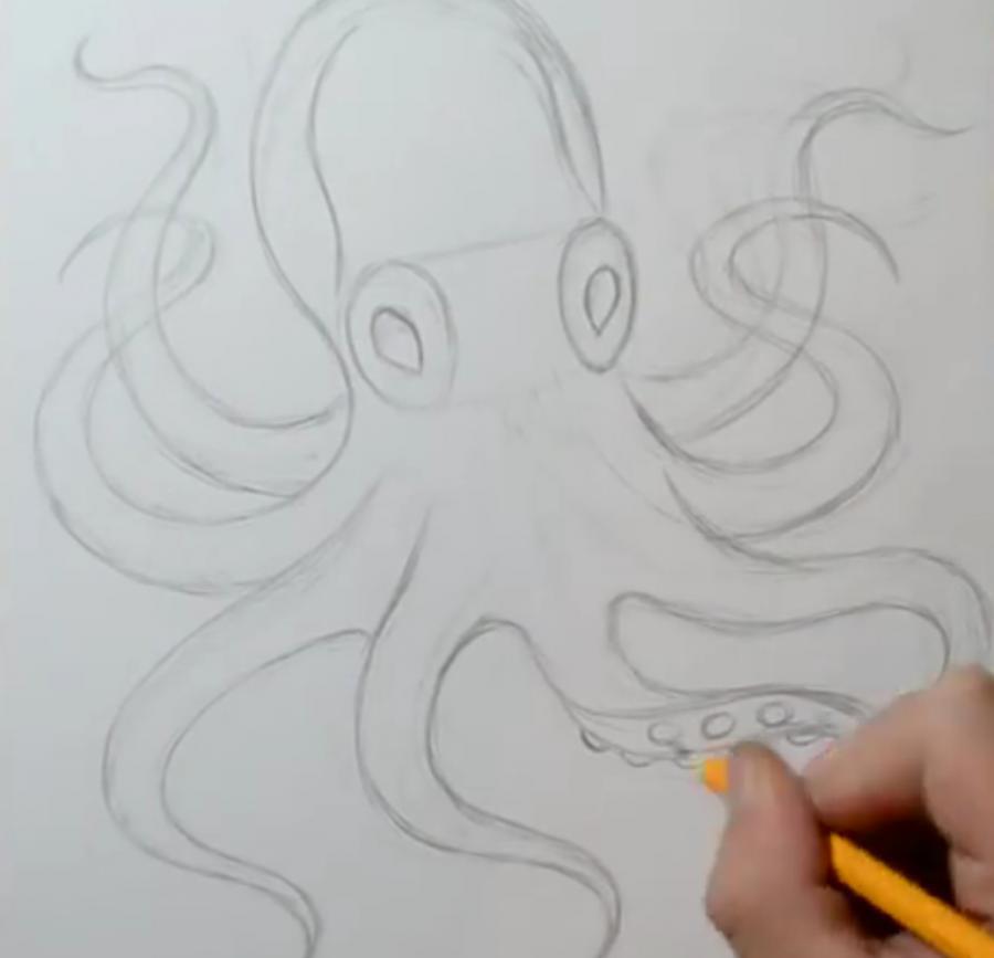Рисуем татуировку осьминога  на бумаге
