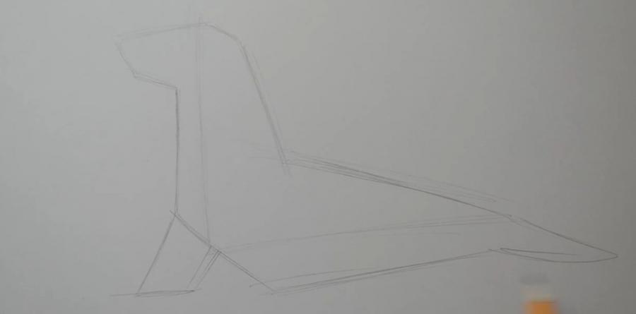 Рисуем татуировку тюленя на бумаге шаг за шагом