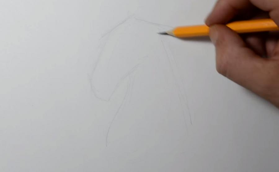 Как научиться рисовать татуировку коня на бумаге шаг за шагом - шаг 1