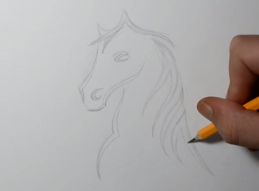 Как научиться рисовать татуировку коня на бумаге шаг за шагом - шаг 2