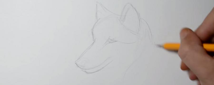 Учимся рисовать голову волка в стиле тату на бумаге - шаг 3