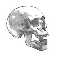 череп на хэллоуин карандашом
