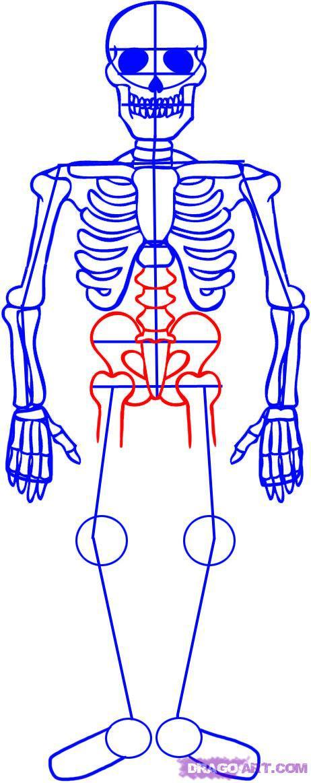 Рисуем скелета на хэллоуин