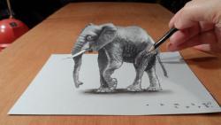 Как нарисовать 3D Слона карандашом видео урок