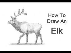 Как нарисовать лося карандашом видео урок