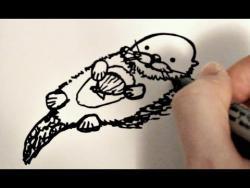 Как нарисовать морскую выдру ребенку видео урок
