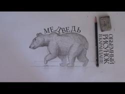 Как рисовать шерсть медведя карандашом видео урок