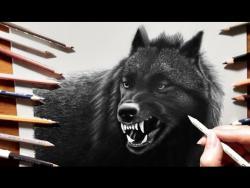 Как нарисовать черного волка видео