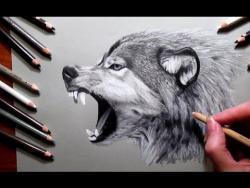 Как нарисовать голову злого волка видео