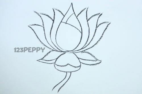 Как нарисовать цветок Лотос карандашом видеоурок