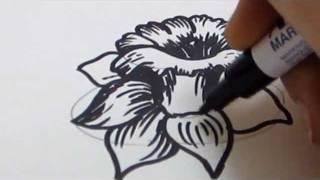 Как нарисовать нарцисс карандашом видео урок