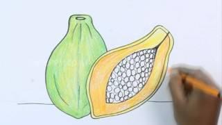 Как нарисовать Папайя карандашом видеоурок