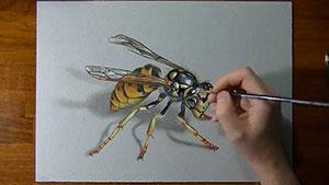 Как нарисовать реалистичную 3D осу на бумаге