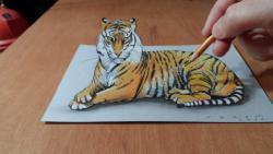 Видео урок: Как нарисовать 3d тигра на бумаге