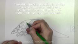 Видео урок: как нарисовать Ящера карандашом