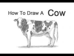 Видео урок: как нарисовать Корову простым карандашом
