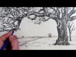 Видео урок как нарисовать на бумаге дерево