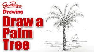 Видео урок как нарисовать пальму карандашом