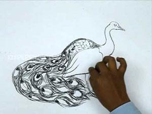 Видео урок как нарисовать Павлина карандашом на бумаге