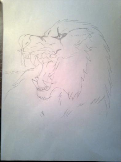 Как нарисовать голову злого волка