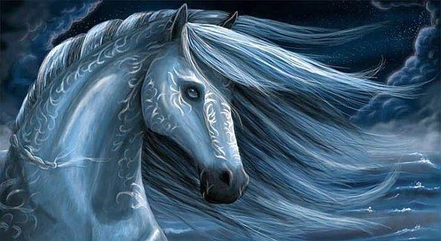 Фото Лошадь к уроку