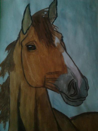 Фото Донская лошадь к уроку