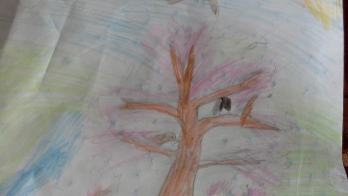 Фото дерево к уроку