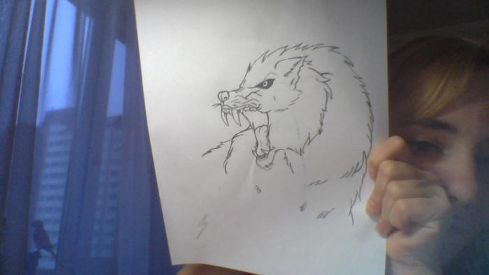 Angry wolf head sketch