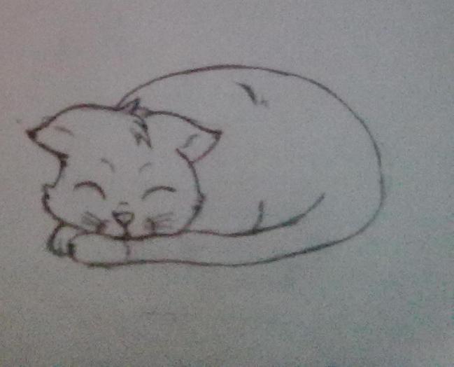 Нарисовать поэтапно котов которые спят