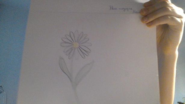 Фото pen к уроку