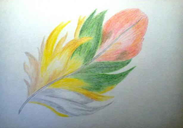 Фото black-lotus к уроку
