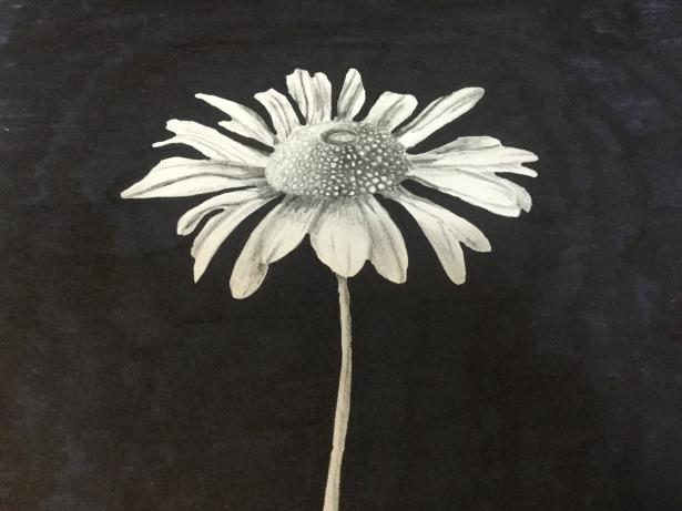Фото Flowers к уроку