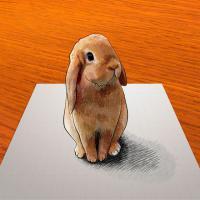 Как научиться рисовать 3D кролика карандашом на бумаге