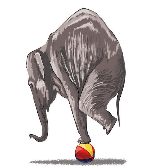 Как научиться нарисовать 3Д слона на мяче - шаг 8