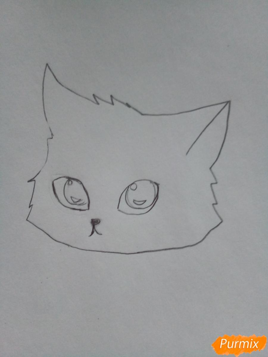 Рисуем аниме котенка фиолетового цвета - шаг 2