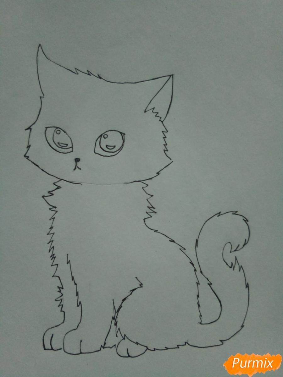 Рисуем аниме котенка фиолетового цвета - шаг 5
