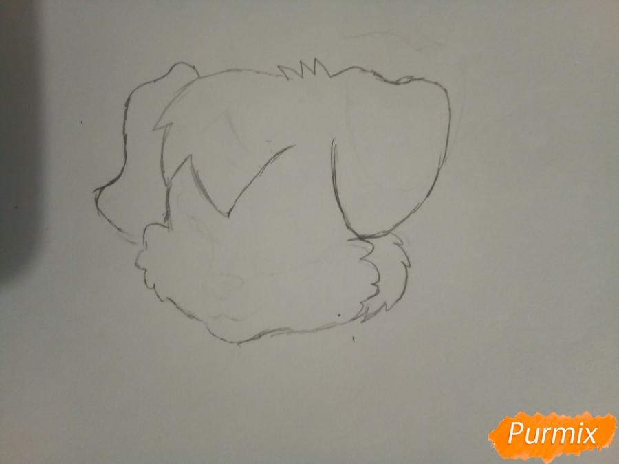 Рисуем аниме щенка с красными глазами - шаг 1
