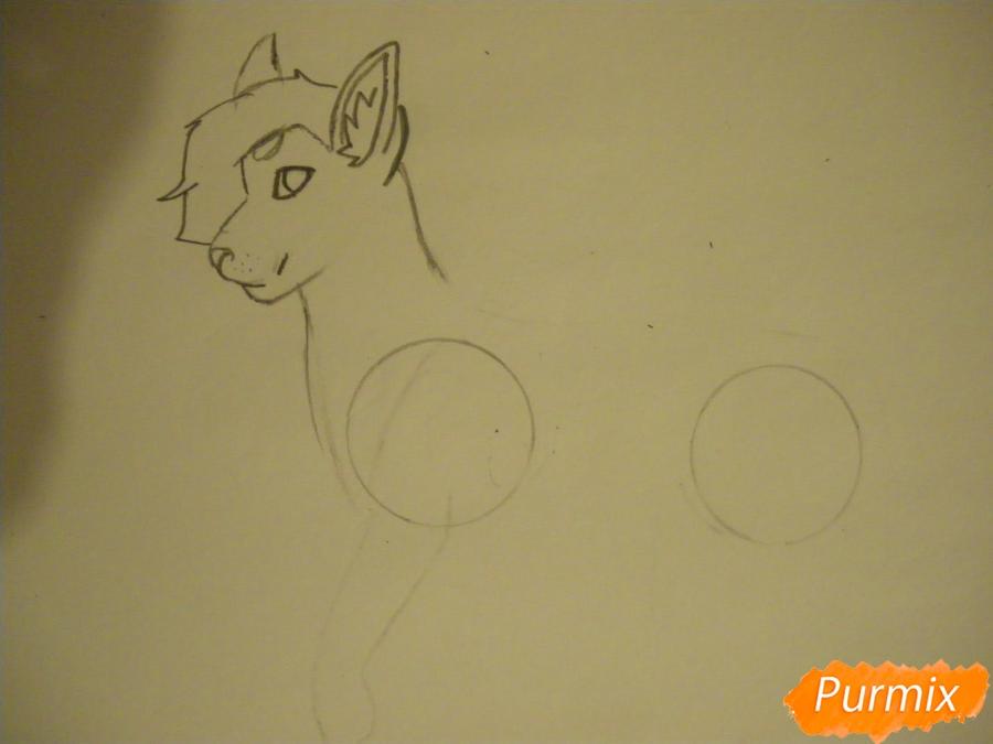 Рисуем дикого кота с коричневым окрасом - шаг 3