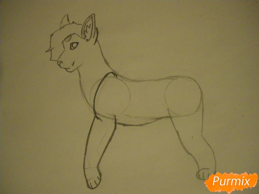 Рисуем дикого кота с коричневым окрасом - шаг 4