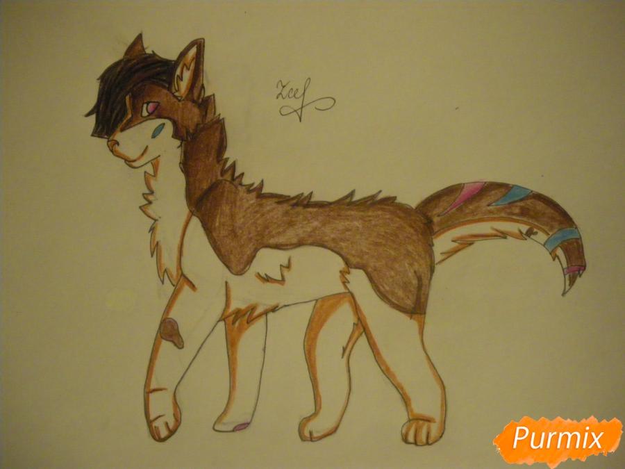 Рисуем дикого кота с коричневым окрасом - шаг 9