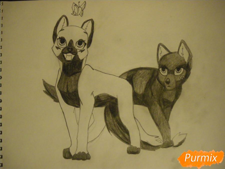 Рисуем двух серых кошечек в стиле аниме - шаг 11
