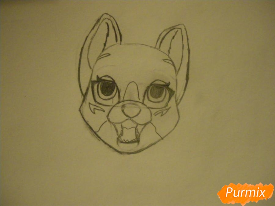 Рисуем двух серых кошечек в стиле аниме - шаг 3