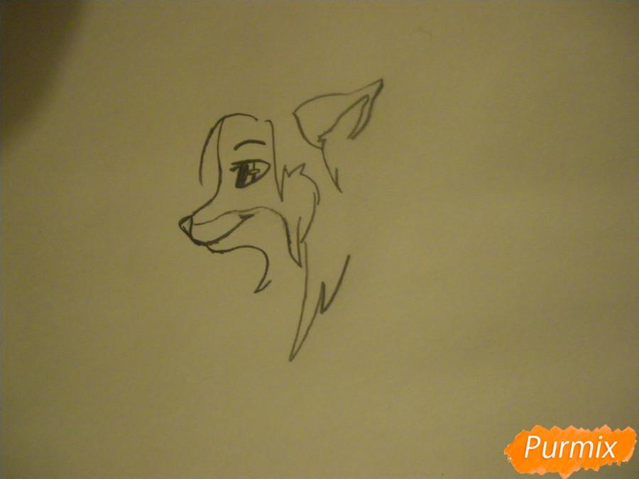 Рисуем лисичку Трикси в стиле аниме - шаг 2
