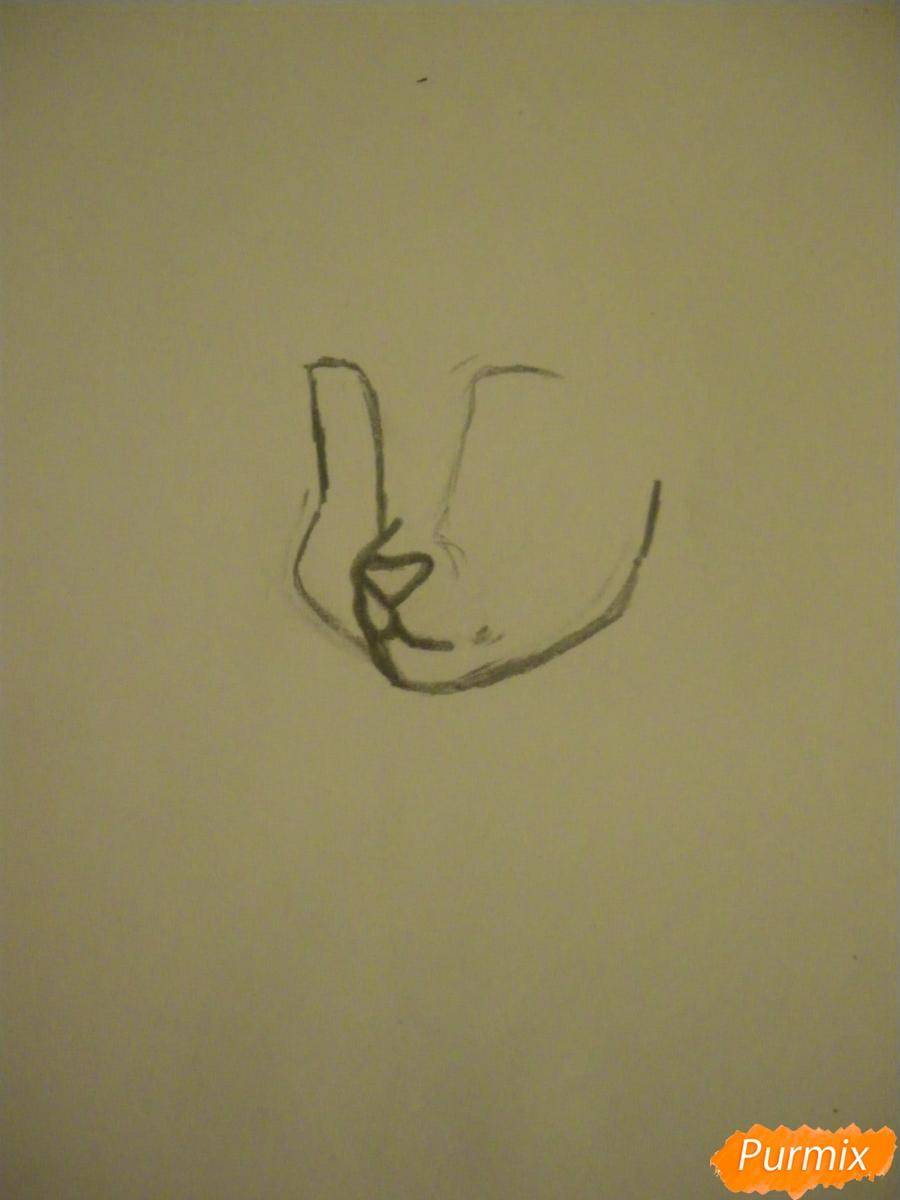 Рисуем серую аниме кошку - шаг 2