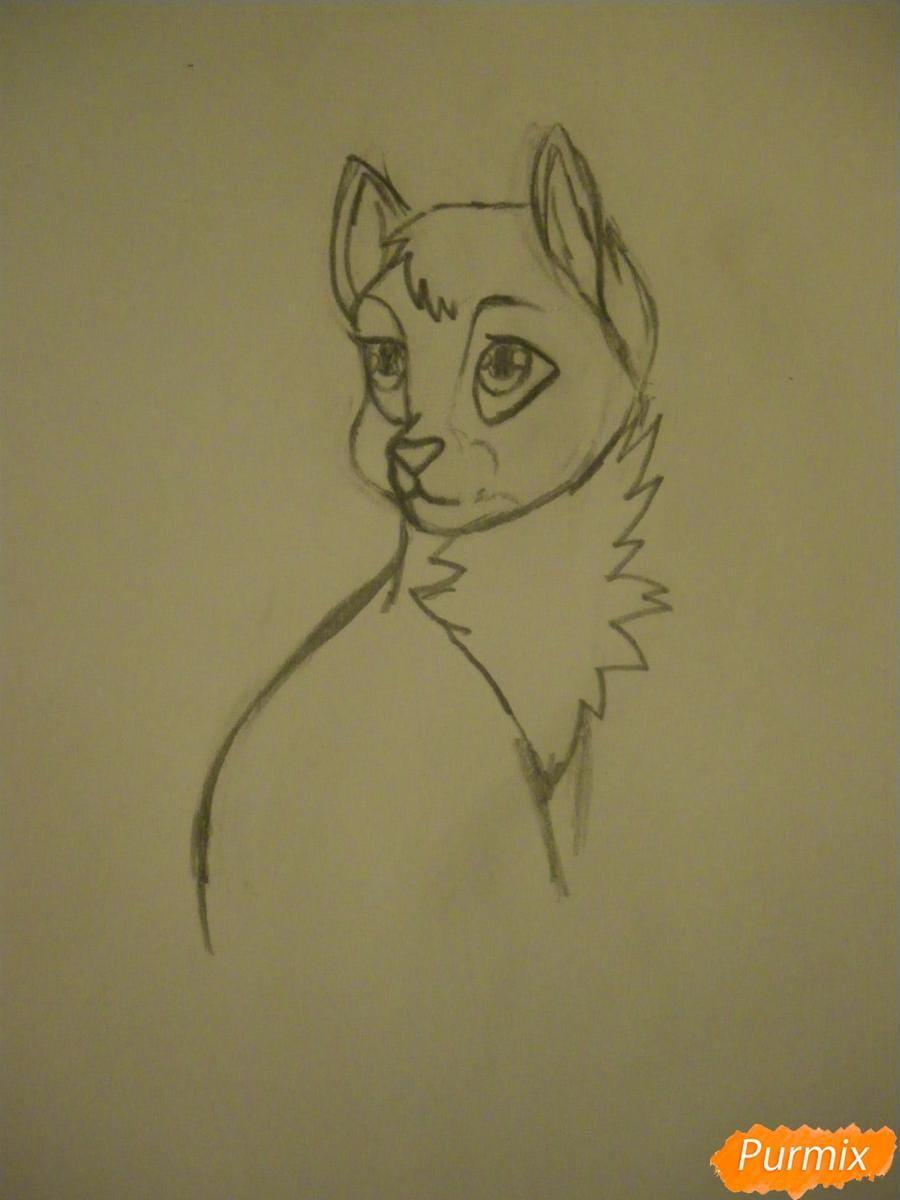 Рисуем серую аниме кошку - шаг 5